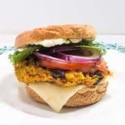 Butternut Squash Veggie Burger