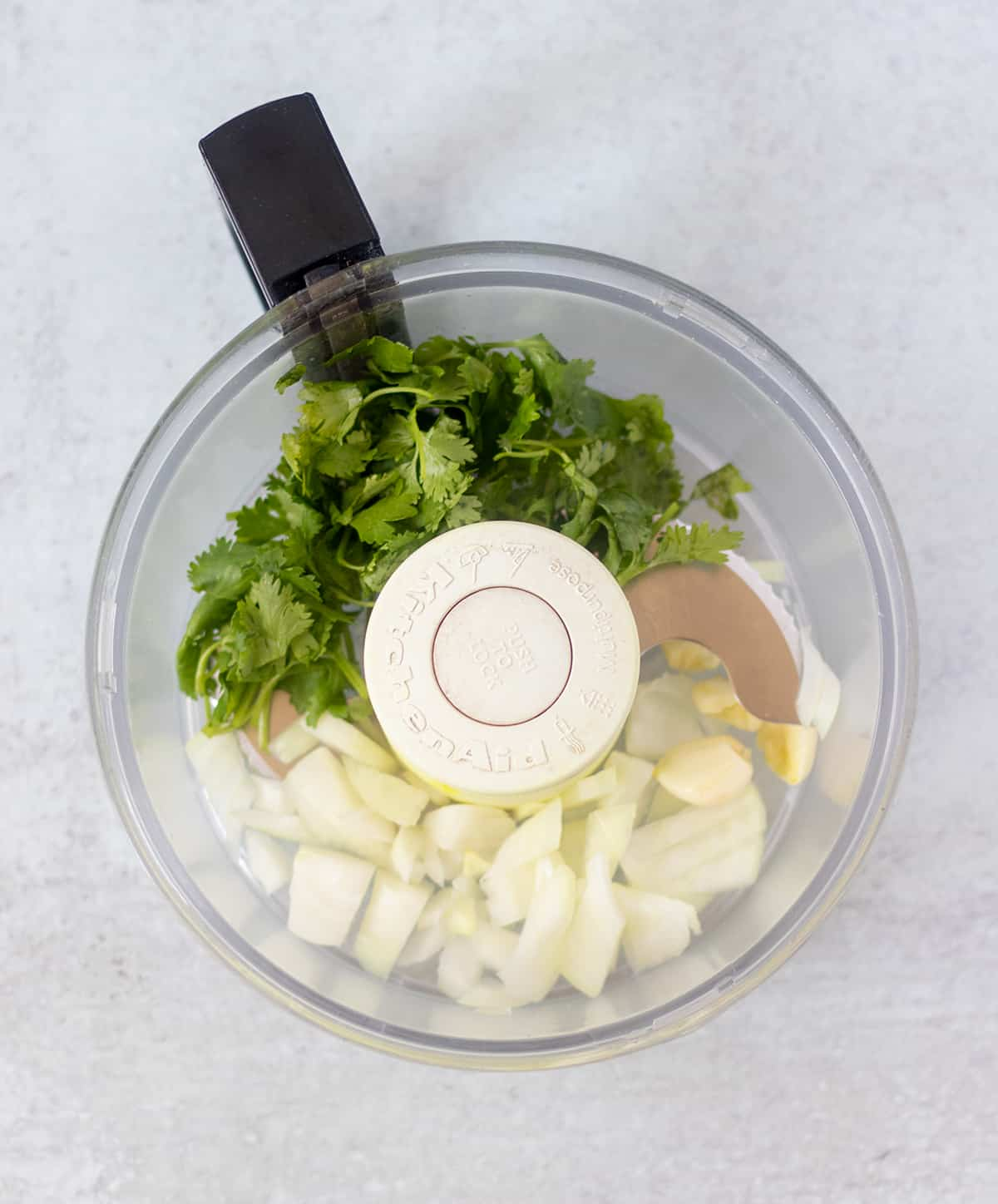 cilantro, onion and garlic in food processor